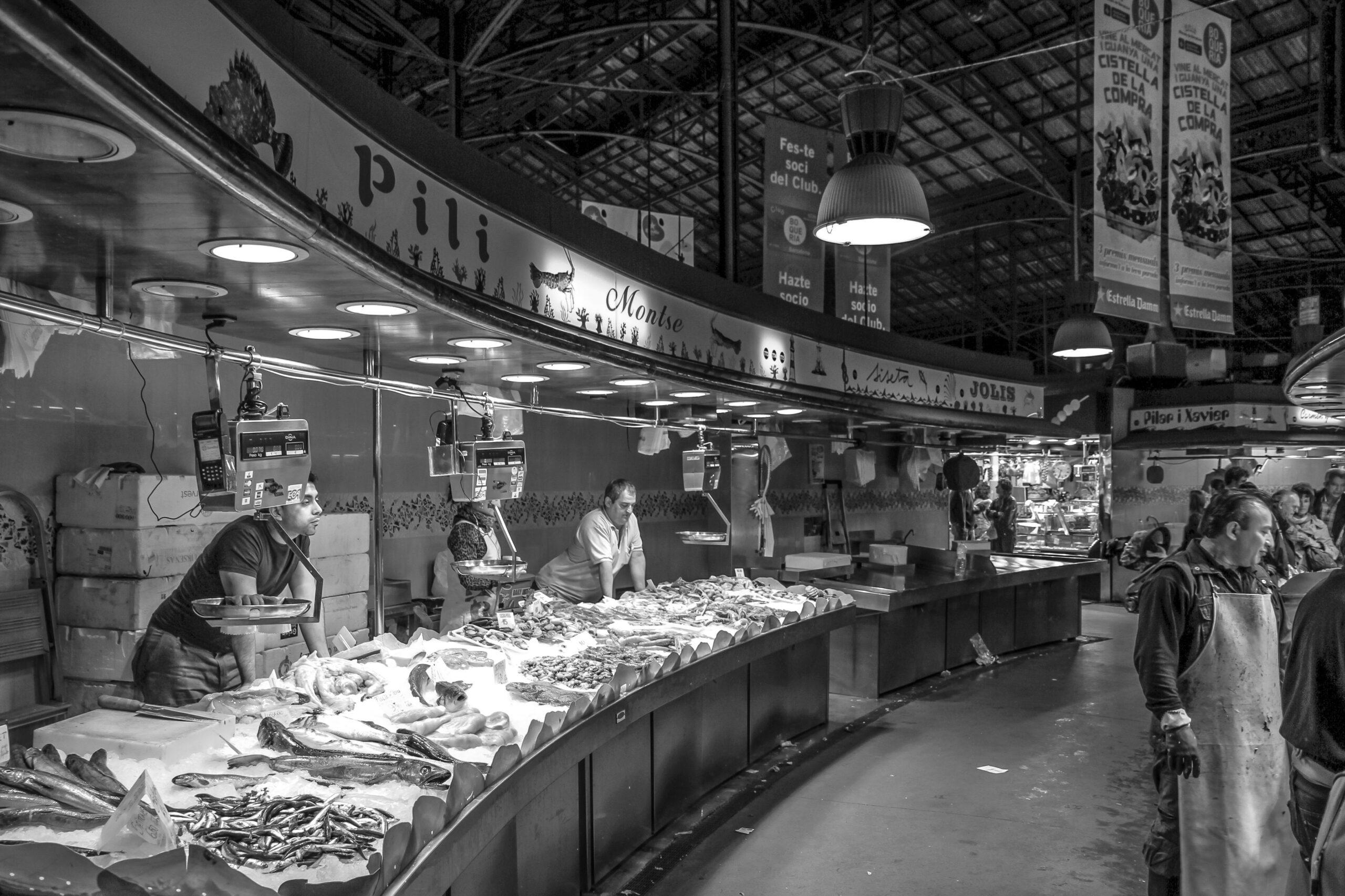 Alergie na ryby a mořské plody